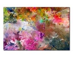 Obraz na płótnie OML085_11 - Frywolność kolorów