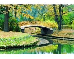 Fototapeta F424 - Mostek w parku