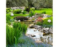 Fototapeta F4507 - Ogród ze stawem w stylu azjatyckim