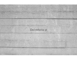 Fototapeta F2442 - Szara ściana betonowa