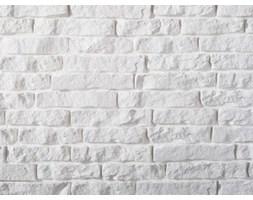 Kamień dekoracyjny wewnętrzny - Stones - Siena - płytka - Biały kamień