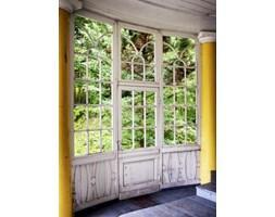 Fototapeta F5719 - Oszklone drzwi