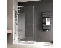 Drzwi prysznicowe Radaway Euphoria 38304001L