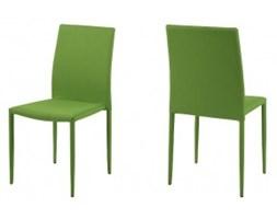 Krzesło Delecta Green