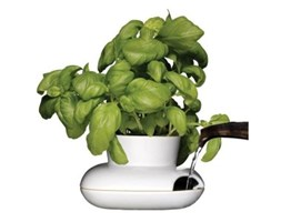 Doniczka / osłonka do ziół Sagaform Herbs&Spices