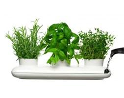 Herbs & Spices — potrójny wazon na zioła - SAGAFORM