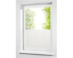"""Folia okienna, chroniąca przed spojrzeniami """"Pnącza roślinne"""""""