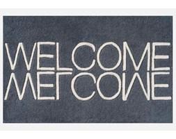 Wycieraczka Welcome Niebieska Linie Design 595401