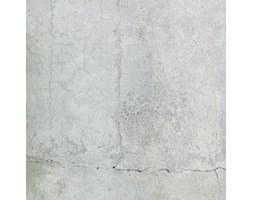 Płytki Betonowe Tubądzin Wyposażenie Wnętrz Homebook