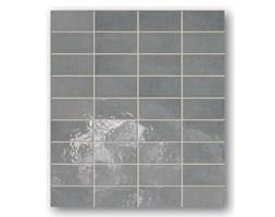 Płytki Kolor Biały Rodzaj Mozaika Por 243 Wnaj Ceny Płytek
