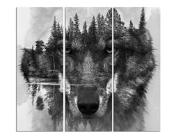 Wilk, Trzyczęściowy - tryptyk