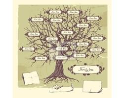 Naklejka Drzewo genealogiczne .