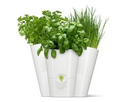 Doniczka na zioła potrójna biała Fresh Herbs by Emsa