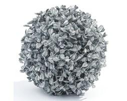 Kula bukszpanowa srebrna