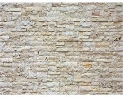 Fototapeta kamienna ściana 270 x 360 cm