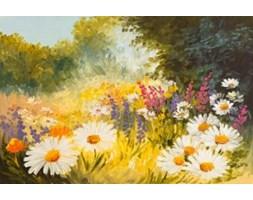 Obraz na płótnie OML313_11 - Łąka pełna kwiatów I