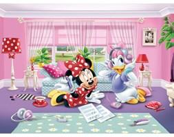 Fototapeta dziecięca DISNEY Minnie and Daisy 360 x 270 cm