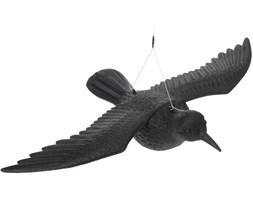 Odstraszacz ptaków - Kruk