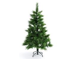 Choinka bożonarodzeniowa sosna douglas 185 cm,