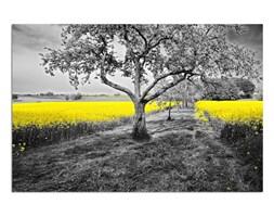 Żółty rzepak, Obraz na płótnie - Canvas