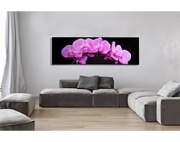 Obraz Orchidea 140x45cm różowa