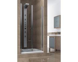 Drzwi prysznicowe Aquaform - Gryfsan.pl