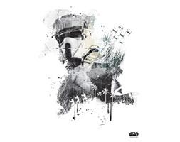 Scarif Trooper