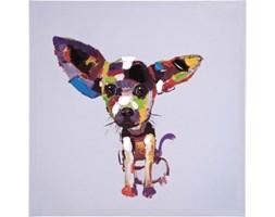 Kare Design Obraz Chihuahua mały - 33051