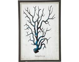 Kare Design Obraz Coral niebieski - 35810