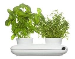 Podwójna doniczka na zioła (biała) Sagaform
