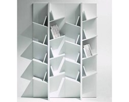 Biblioteczka V