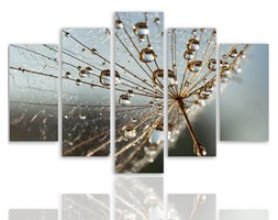 Krople rosy i pajęczyna, Pięcioczęściowy - pentaptyk