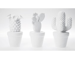 KARE Design :: Dekoracyjny Cactus