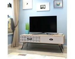 243169 vidaXL Stolik pod telewizor brązowy 100x40x35 cm