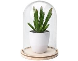 Sztuczna roślina pod szklaną kopułą wzór 1