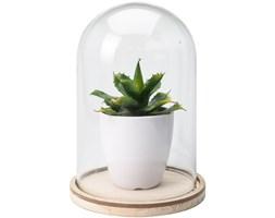 Sztuczna roślina pod szklaną kopułą wzór 3