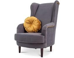 Fotele Abra Abra Meble Wyposażenie Wnętrz Homebook