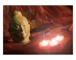 Eglo 75039 - Świecący obraz LED dekoracyjny BUDDHA 3xLED/0,02W