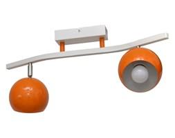 Reflektor punktowy MORRIS 2xE27/60W/230V