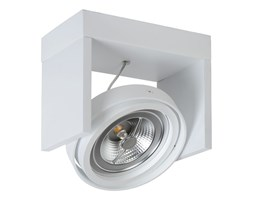 Lucide 31988/12/31 - LED Reflektor punktowy ZETT-LED 1xG53/12W/230V/12V