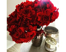 Bukiet Hortensji Red Elegant