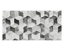 Plytki Grupy Wymiarowe 25x50 Cm Castorama Wyposazenie Wnetrz