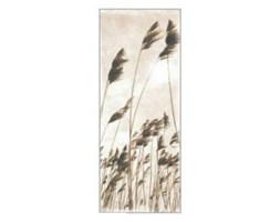 Eurographics EC-dt1097 Eco Chic Natural Breeze, 20 x 50 cm