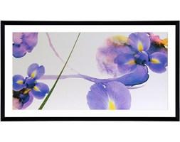 Obraz 113x63cm Iris