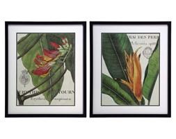 Zestaw 2 obrazów o wymiarach 545x64cm Botanique