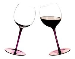 Zestaw 2 bujające się kieliszki do wina Sagaform Bar 2 szt. purpurowe SF-5016233 - do kupienia: www.superwnetrze.pl