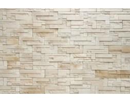 Fototapeta F2668 - Nowoczesny wzór ściany z cegły