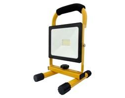 LED Reflektor przenośny LED/50W/230V IP64
