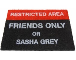 Restricted area - Friends only or SASHA