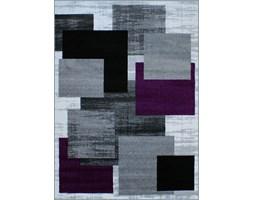 Dywany Kolor Fioletowy Wyposażenie Wnętrz Homebook